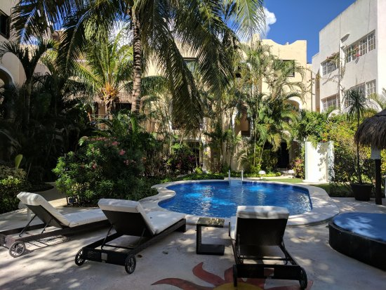 Perfect Oasis in the heart of Playa